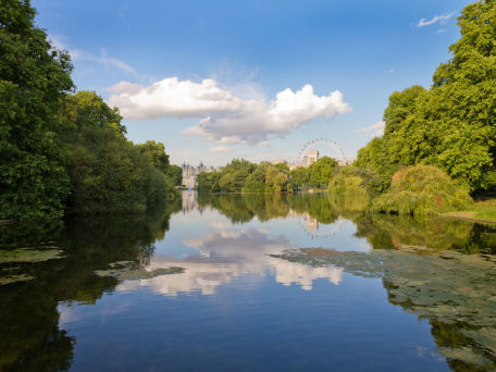 St. James' Park in London - © Frank Fischbach / 2016 Thinkstock.